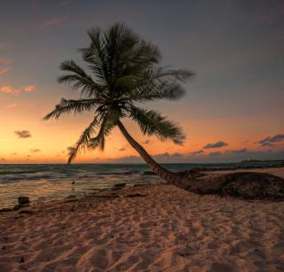 Mexican Beach - Obrázkek zdarma pro iPad Air