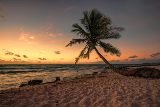 Mexican Beach - Obrázkek zdarma pro 1920x1200