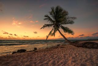 Mexican Beach - Obrázkek zdarma pro Samsung Galaxy Ace 3