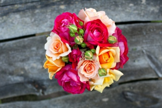 Colorful Roses Wallpaper for Android, iPhone and iPad
