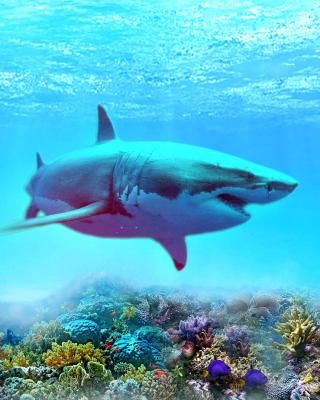 Great white shark - Obrázkek zdarma pro Nokia Lumia 900