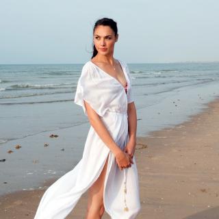 Gal Gadot Actress - Obrázkek zdarma pro iPad mini 2