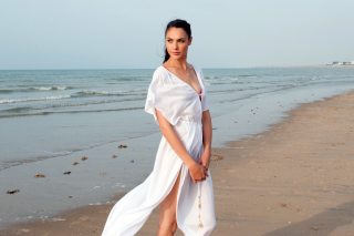Gal Gadot Actress Picture for Android, iPhone and iPad
