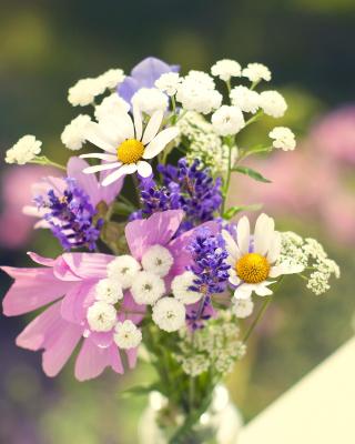 Bouquet of wildflowers - Obrázkek zdarma pro Nokia C3-01 Gold Edition