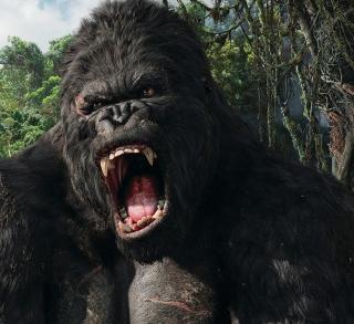 King Kong - Obrázkek zdarma pro 208x208