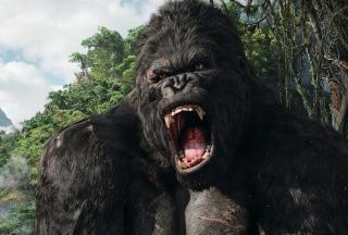 King Kong - Obrázkek zdarma pro Samsung Galaxy Q
