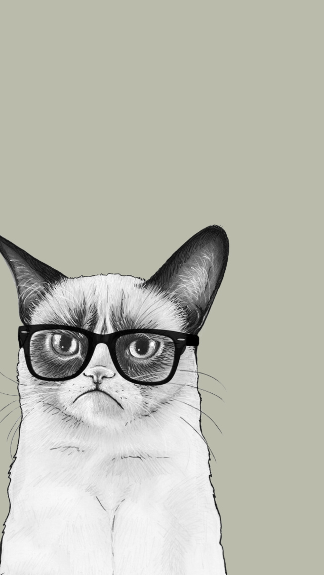 Grumpy Cat wallpaper 640x1136