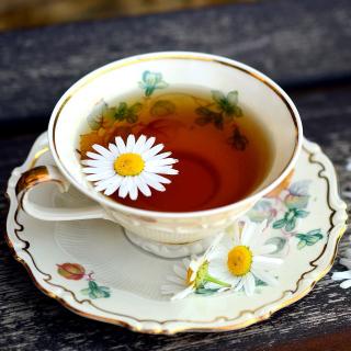 Tea with daisies - Obrázkek zdarma pro 1024x1024