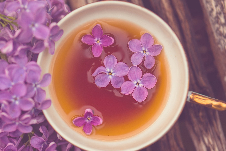 природа цветы сирень сахар блюдо  № 1154271 загрузить