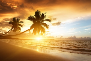 Caribbean Landscape Wallpaper for Android, iPhone and iPad