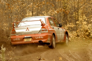 Free Mitsubishi Rally Car Picture for Android, iPhone and iPad