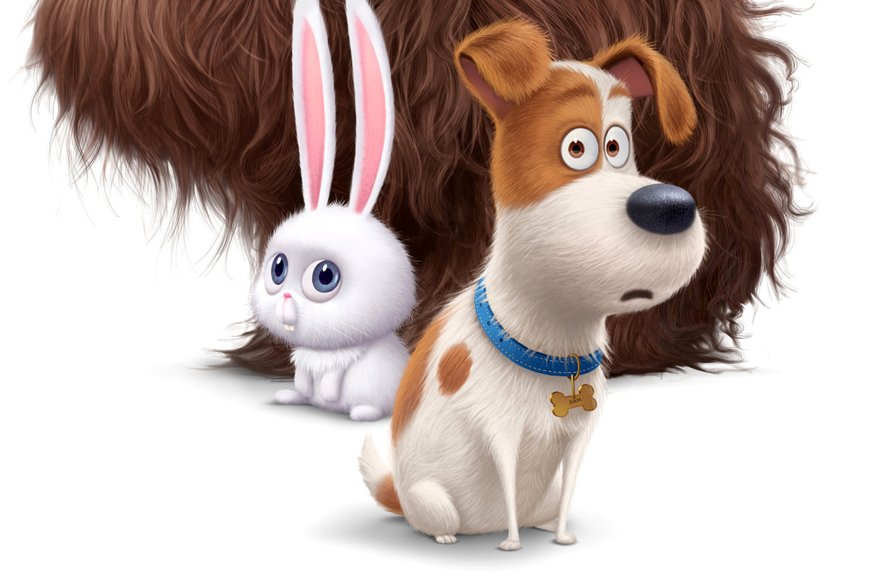 The Secret Life Of Pets 2016 Hindi Download: The Secret Life Of Pets Movie 2016 Wallpaper For 2880x1920