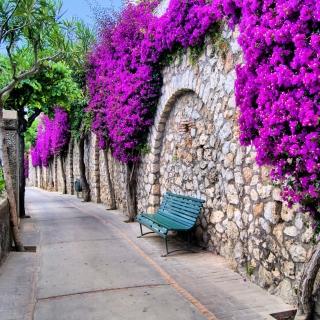 Iitaly flower street - Obrázkek zdarma pro 128x128
