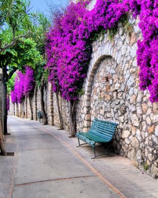 Iitaly flower street - Obrázkek zdarma pro iPhone 4
