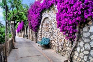 Iitaly flower street - Obrázkek zdarma pro Sony Xperia Z1