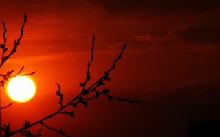 Free Red Sun Picture for Android, iPhone and iPad
