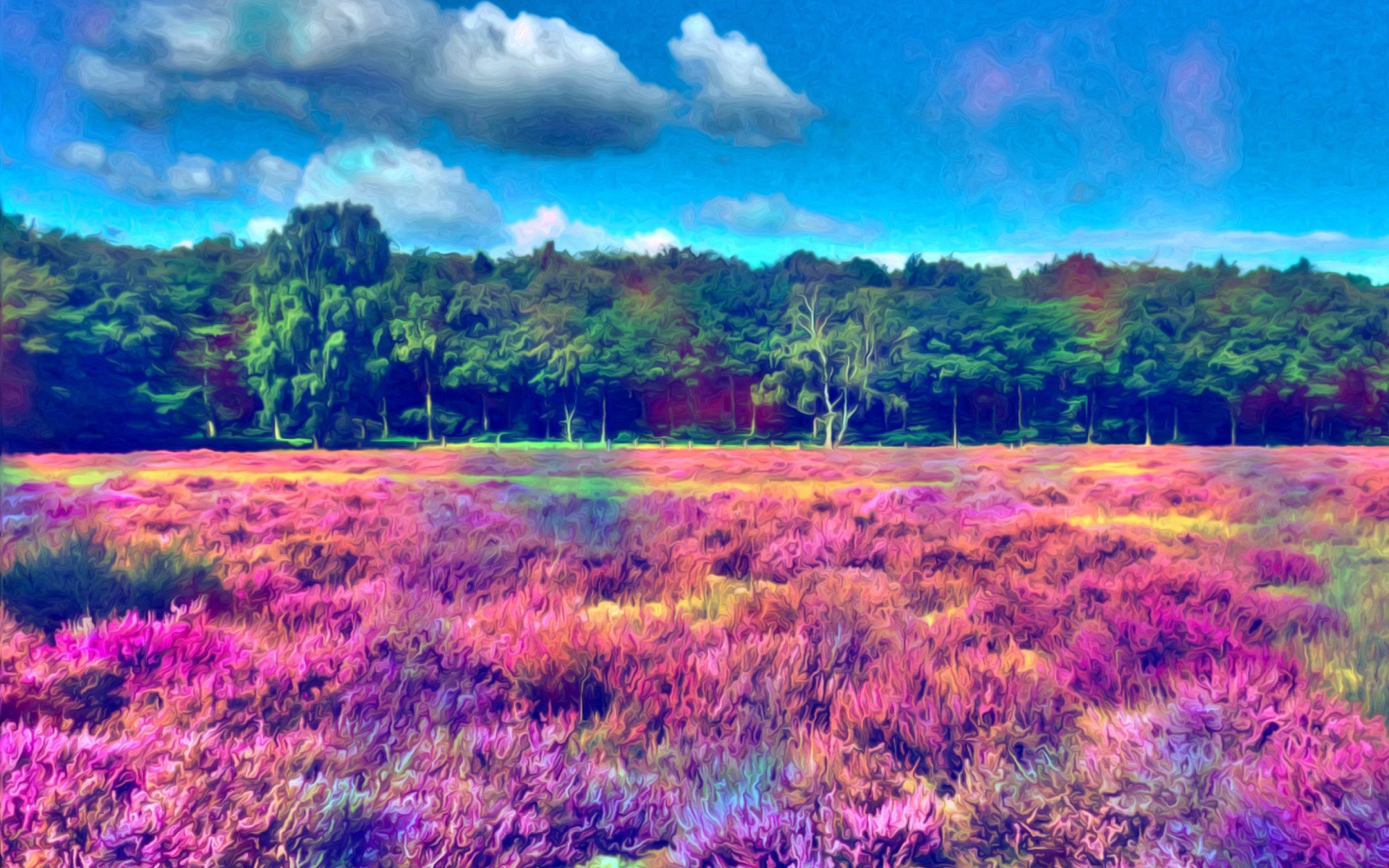 Field of color fondos de pantalla gratis para widescreen for Fondos de escritorio gratis