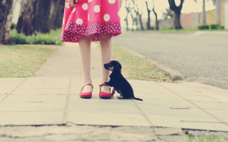 Girl In Polka Dot Dress And Her Puppy Wallpaper for Android, iPhone and iPad