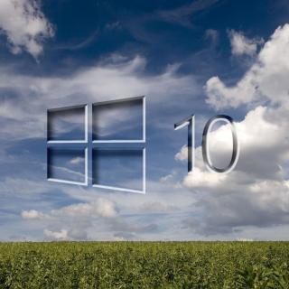Windows 10 Grass Field - Obrázkek zdarma pro 1024x1024