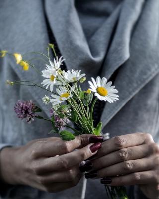 Pretty Little Field Bouquet In Hands - Obrázkek zdarma pro iPhone 6 Plus