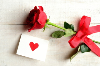 Free Rose With Letter Picture for Android, iPhone and iPad
