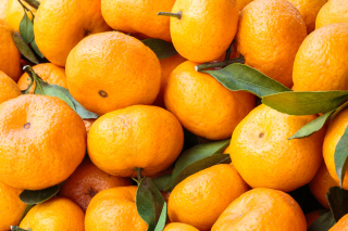 Tangerines Wallpaper for Android, iPhone and iPad