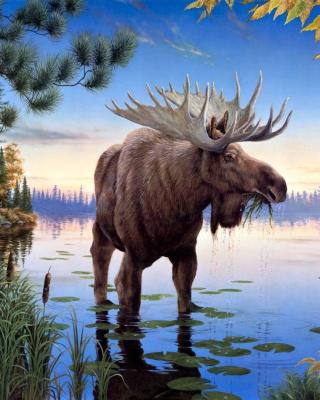 Elk - Obrázkek zdarma pro 132x176
