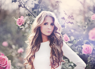 Free Girl Beautiful As Rose Picture for Android, iPhone and iPad