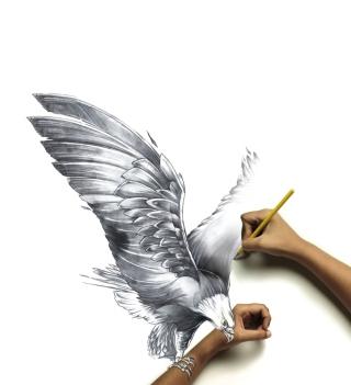 Drawing An Eagle - Obrázkek zdarma pro 208x208