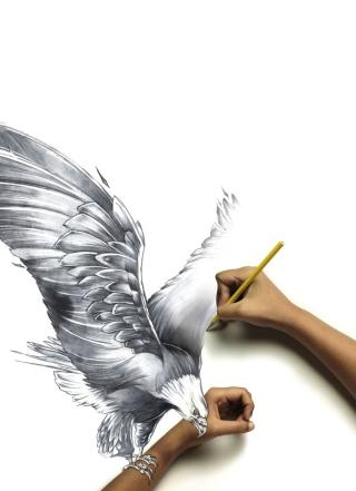 Drawing An Eagle - Obrázkek zdarma pro iPhone 5