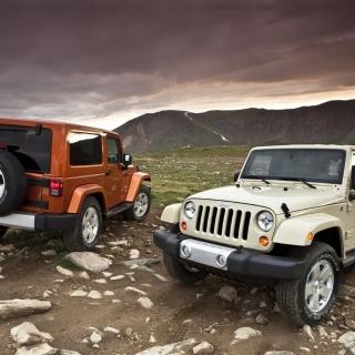 Jeep Wrangler - Obrázkek zdarma pro 1024x1024
