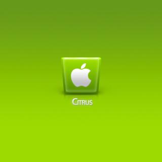Apple Citrus - Obrázkek zdarma pro iPad 2