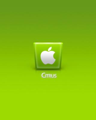Apple Citrus - Obrázkek zdarma pro 480x800