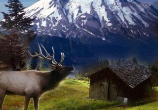 Big Elk - Obrázkek zdarma pro Sony Xperia Z