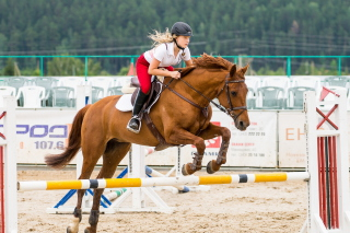 Equestrian Sport Background for Android, iPhone and iPad