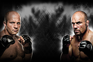 Free Fedor Emelianenko Mma Picture for Android, iPhone and iPad