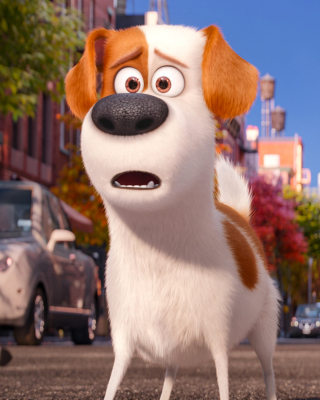 The Secret Life of Pets, Max and Snowball - Obrázkek zdarma pro Nokia Asha 203