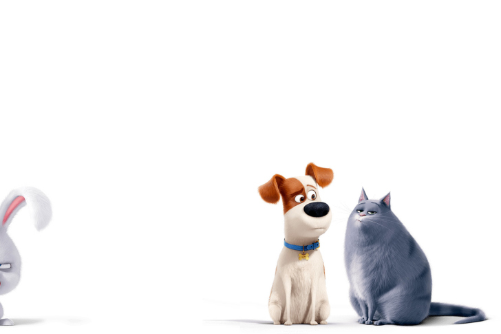 The Secret Life of Pets Max and Chloe wallpaper