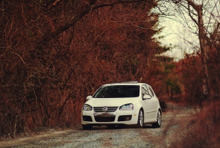 Volkswagen in Forest Wallpaper for Android, iPhone and iPad