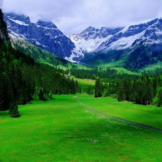 Alps Mountain - Obrázkek zdarma pro 208x208