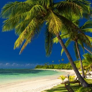 Paradise Coast Dominican Republic - Obrázkek zdarma pro iPad Air