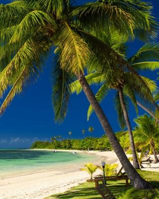 Paradise Coast Dominican Republic - Obrázkek zdarma pro Nokia C1-01