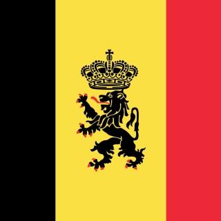 Belgium Flag and Gerb - Obrázkek zdarma pro 320x320