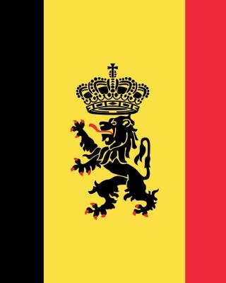 Belgium Flag and Gerb - Obrázkek zdarma pro 352x416