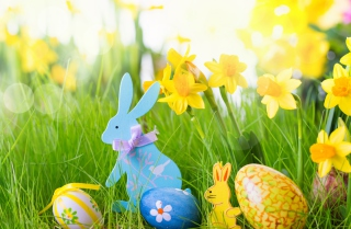 Easter Time Picture for Android, iPhone and iPad
