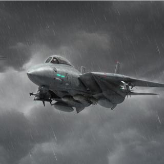 Grumman F 14 Tomcat Interceptor - Obrázkek zdarma pro 208x208