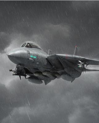 Grumman F 14 Tomcat Interceptor - Obrázkek zdarma pro Nokia Asha 503