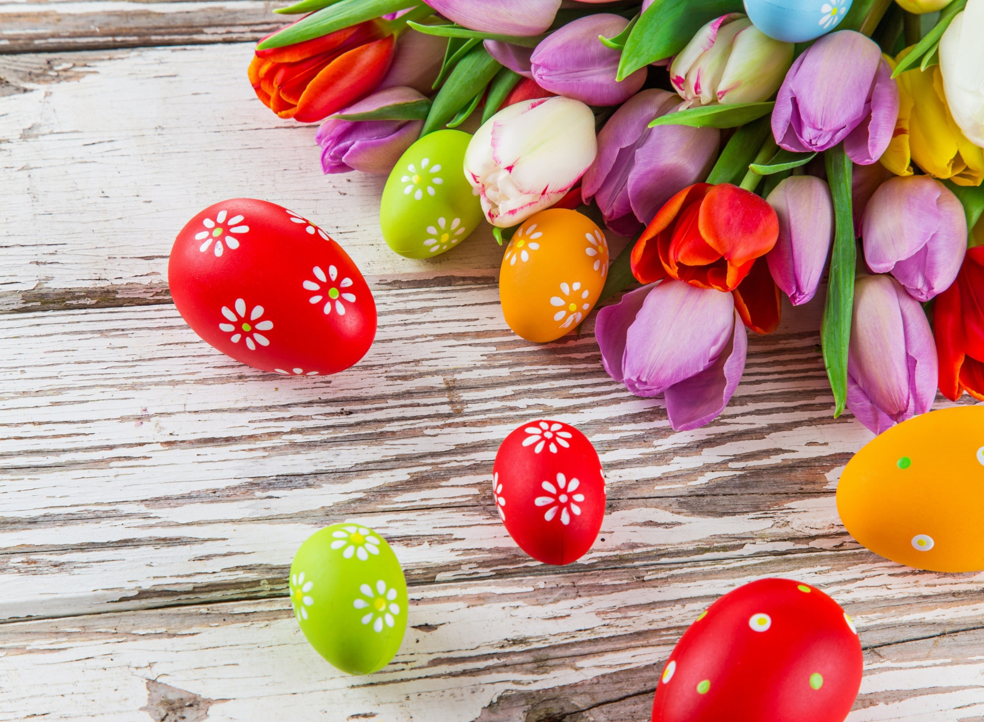 Me62 Turtle Sea Ocean Animal Parallax Hd: Easter Tulips And Colorful Eggs Wallpaper For Samsung