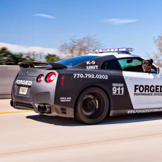 Police Nissan GT-R - Obrázkek zdarma pro 1024x1024