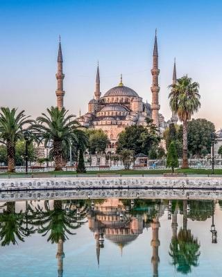 Istanbul Mosque HD - Obrázkek zdarma pro 240x400